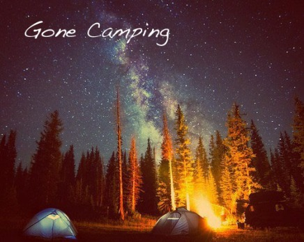 camping stars fire copy